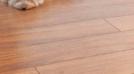 Jak prawidłowo zamontować panele podłogowe